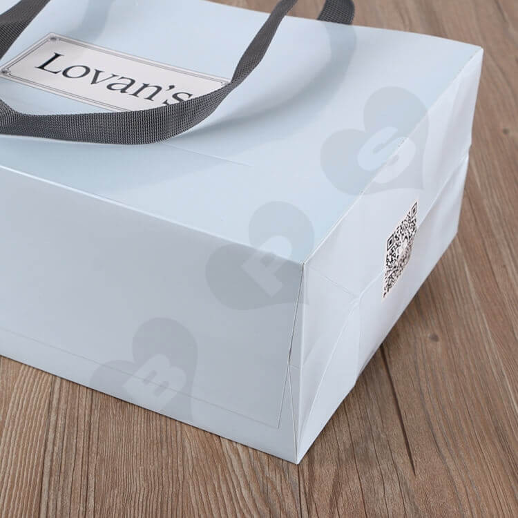 Color Printed Cardboard Shopping Bag For Shoe side view four