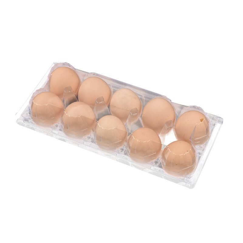 Egg Blister Packaging Box